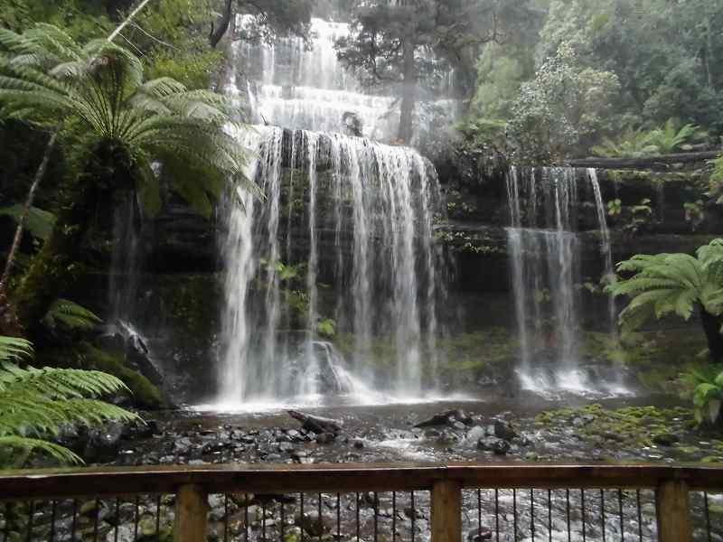 お肌がピチピチになるほどのマイナスイオン!森のキレイな空気を感じながらウォーキングでラッセル滝を目指す