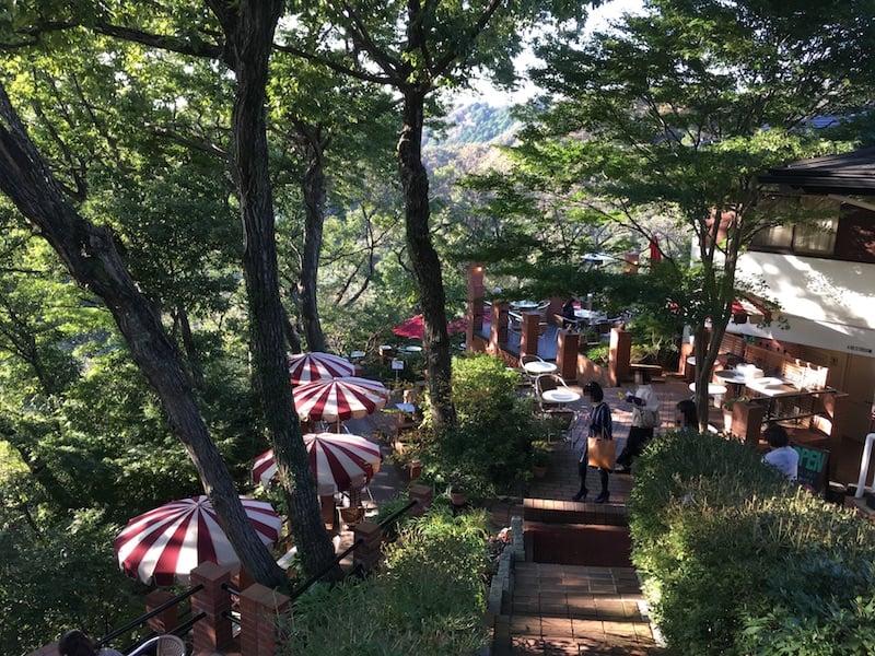 鎌倉隠れカフェで森林浴する休日。銭洗弁天からのハイキングコースでダイエットも!?